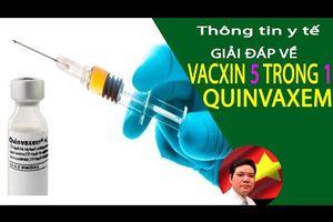 Thông Tin Y Tế: Vacxin 5 Trong 1, Vacxin 5 Trong Một Là Gì |  Vacxin Quinvaxem