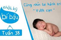 Thai 38 tuần