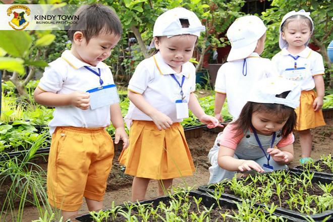Các bé ở Trường Mầm non Kindy Town học hỏi ở sân vườn