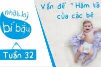 Thai 32 tuần