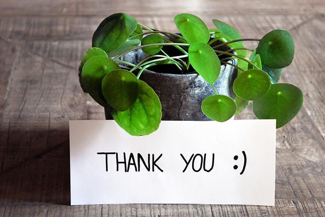 Hãy đặt sự biết ơn vì đã được tặng hòa trên cả giá trị những món quà.