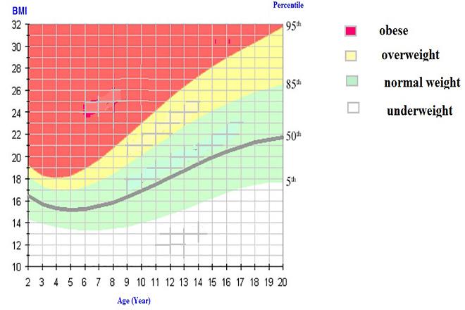 Biểu đồ BMI chuẩn