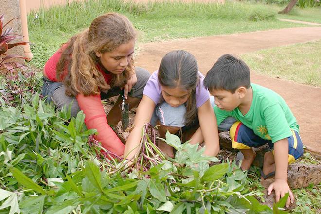 Cho trẻ cùng làm vườn