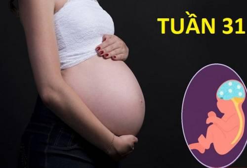 Thai 31 tuần - cẩm nang dành cho mọi mẹ bầu ở giai đoạn này
