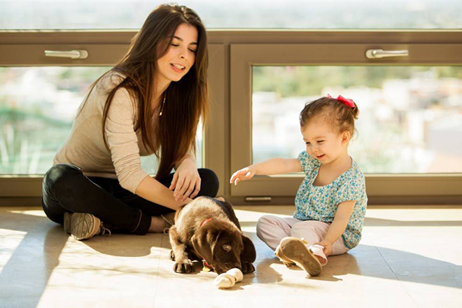 Trẻ chơi cùng thú cưng