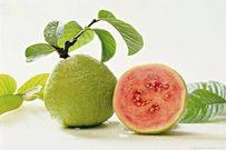10 loại trái cây dồi dào vitamin C tốt cho trẻ