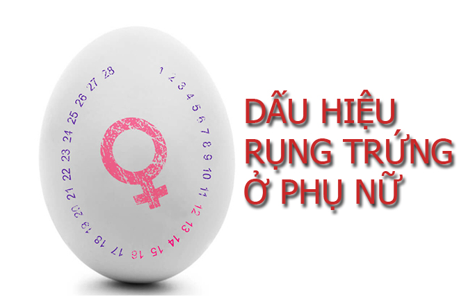 dấu hiệu rụng trứng