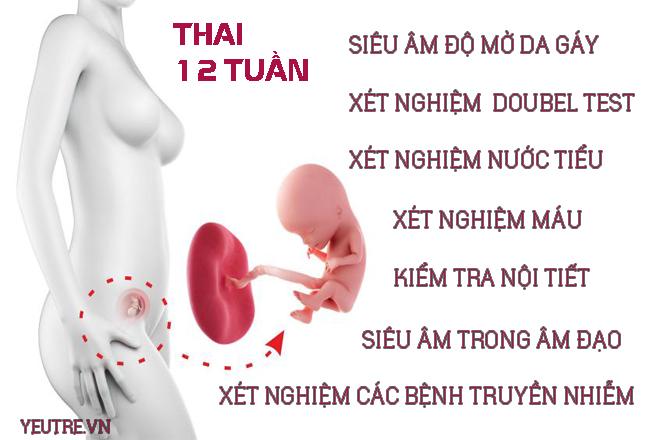 xét nghiệm thai nhi
