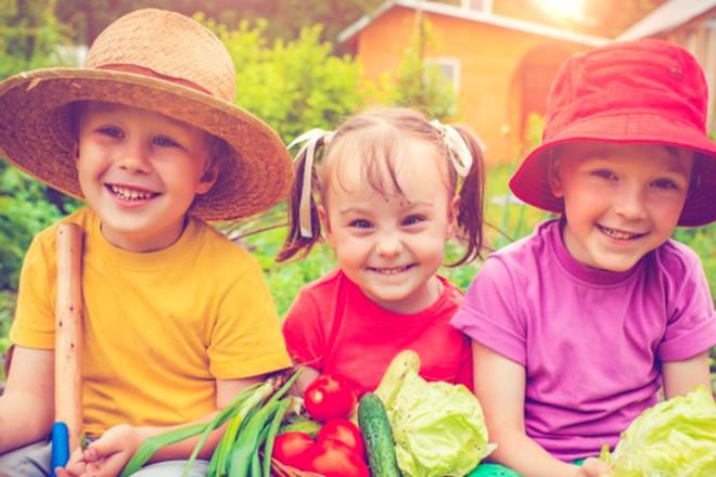 Bổ sung dinh dưỡng cho trẻ em