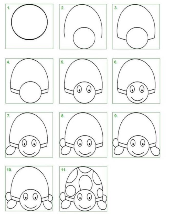 Cách vẽ hình con rùa 1