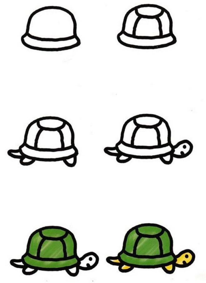 Cách vẽ hình con rùa 2