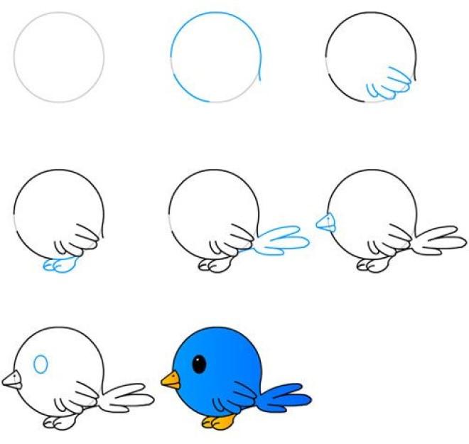 Vẽ hình chú chim non