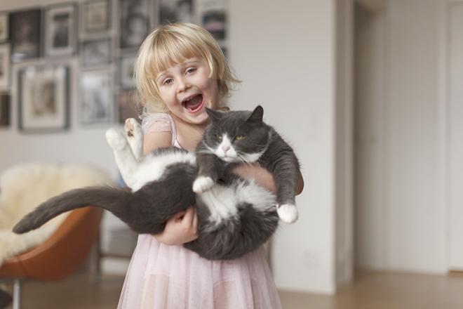 Bé ôm mèo