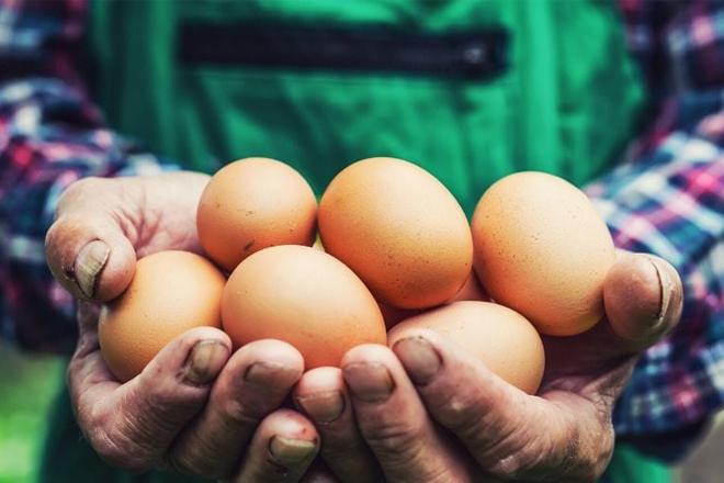 Tác dụng của trứng hay