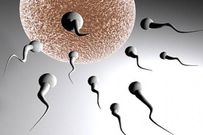 Nam giới vô sinh vẫn có cơ hội sinh con?
