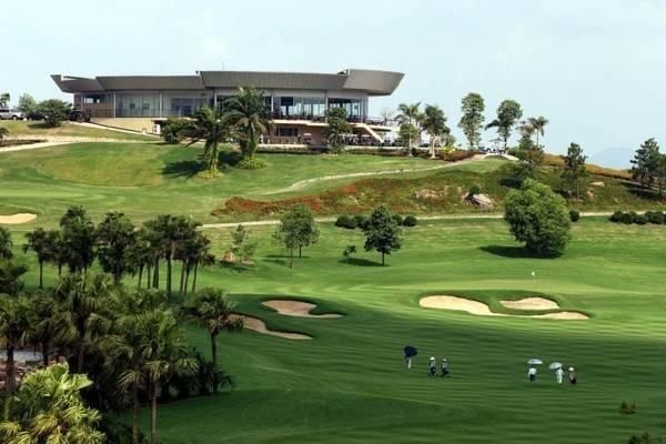 24456-golf.jpg