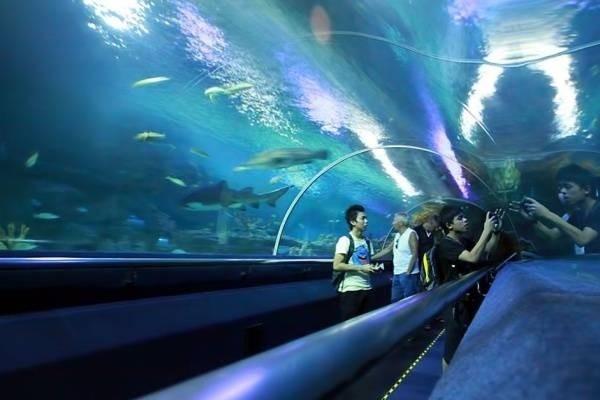 26164-thuy-cung-aquaria-klcc.jpg