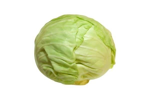 29793-cabbage-01.jpg