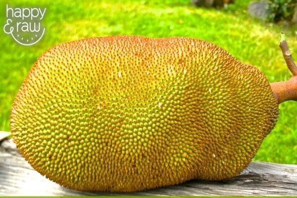 29804-wholejackfruit.jpg