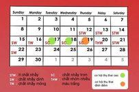 4 cách tính ngày rụng trứng chính xác