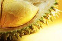 Bà bầu có nên ăn sầu riêng không?