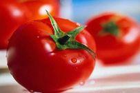 13 mẹo vặt ít người biết với cà chua