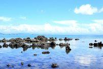 Du lịch đảo Cô Tô: Trải nghiệm thú vị trong mùa hè