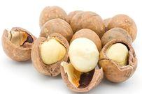 9 loại hạt tốt cho sức khỏe mẹ bầu
