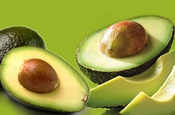 5115-2014102195442119-10loiichcuaquaboavocado-avocado4.jpg