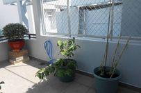 Kinh nghiệm trồng rau quả xanh mướt trên sân thượng