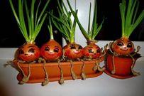 Gợi ý 10 loại rau - củ - quả trồng trên sân thượng thu hoạch quanh năm