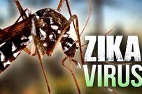 Phát hiện thêm 2 phụ nữ nhiễm vi rút Zika tại TP. HCM và Bình Dương