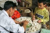 Cậu bé 8 tuổi làm 10.000 chiếc bánh một ngày để giúp đỡ gia đình