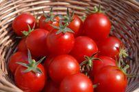 Top 3 cách giảm béo nhanh chóng trong 1 tuần với các loại hoa quả tốt cho sức khỏe