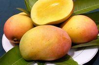 Top 6 loại trái cây cha mẹ không nên cho trẻ ăn nhiều kẻo ảnh hưởng sức khỏe