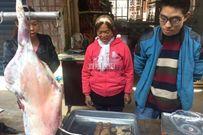 Mổ cừu làm thịt, một gia đình không ngờ vớ được kho báu tiền tỉ