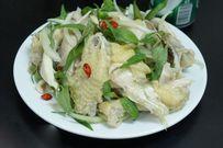 Cách làm món gỏi gà rau răm ngon đúng vị cho bữa cơm gia đình