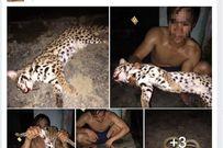 Thanh niên khoe ảnh làm thịt mèo rừng quý hiếm trên facebook