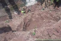 Gia đình 2 bé gái mất tích lên tiếng về 2 bộ xương chôn trong vườn một đối tượng