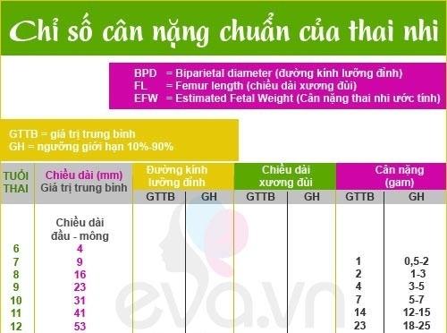 chieu-dai-xuong-dui-thai