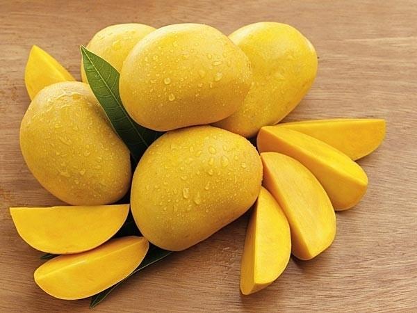 x08-1365416086-mangoespagespeedicxpxhjen-h
