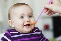 Thực đơn ăn dặm chuẩn của viện dinh dưỡng giúp trẻ tránh còi xương, suy dinh dưỡng