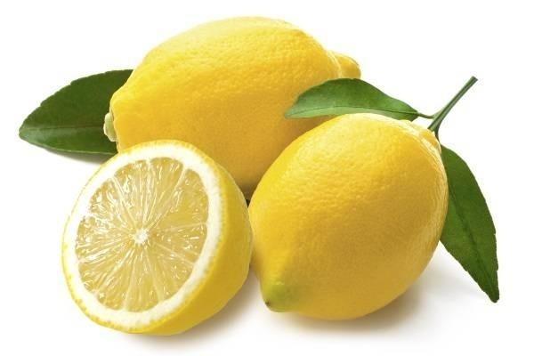 7173-lemon-1.jpg