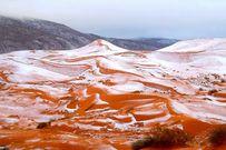 Tuyết rơi lần đầu tiên sau 37 năm trên sa mạc Sahara