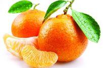 7 nhóm thực phẩm nên kiêng khi trẻ bị ho